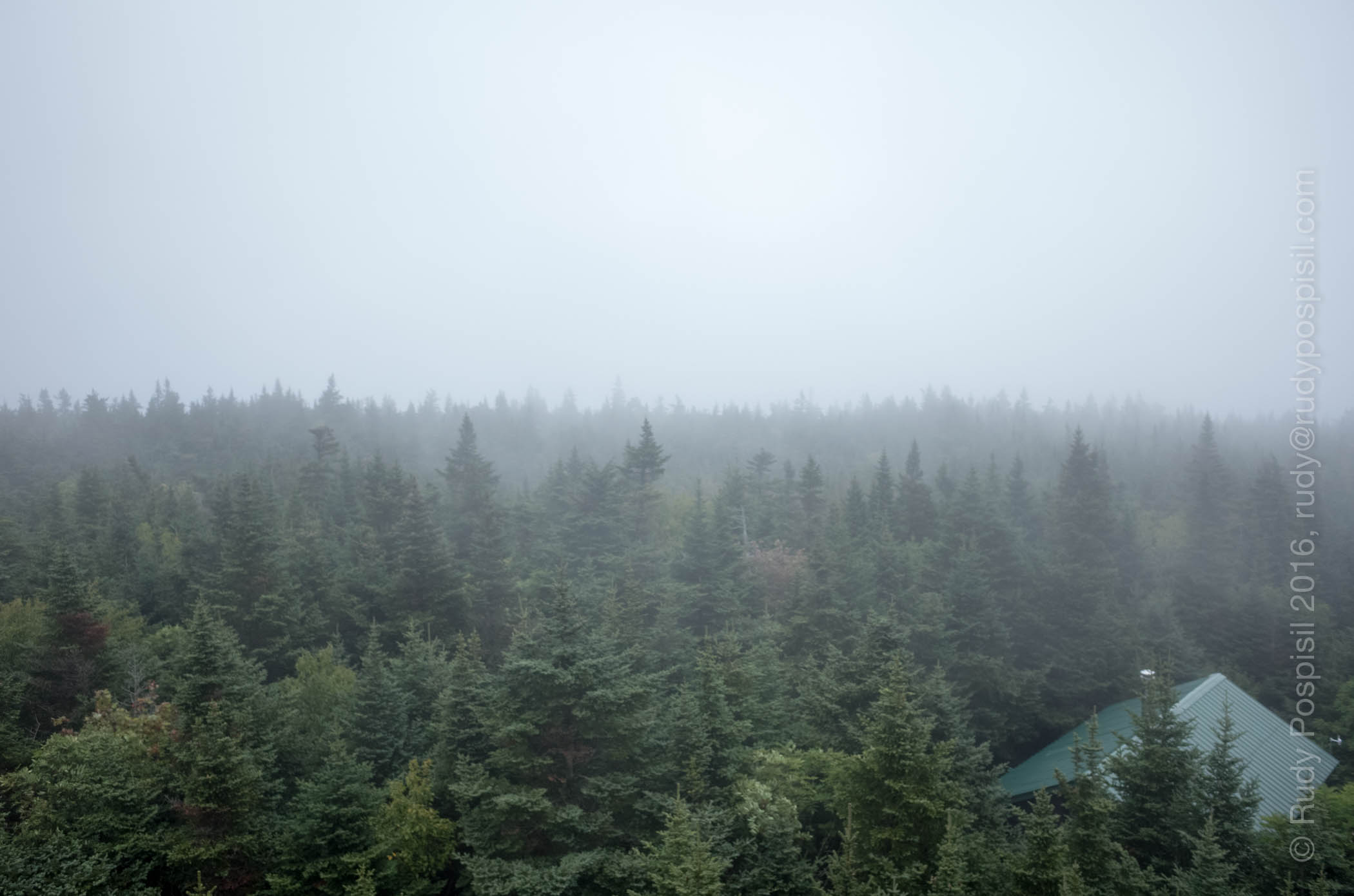The very foggy view from the fire tower at the top of Balsam Lake Mountain in the Catskills.