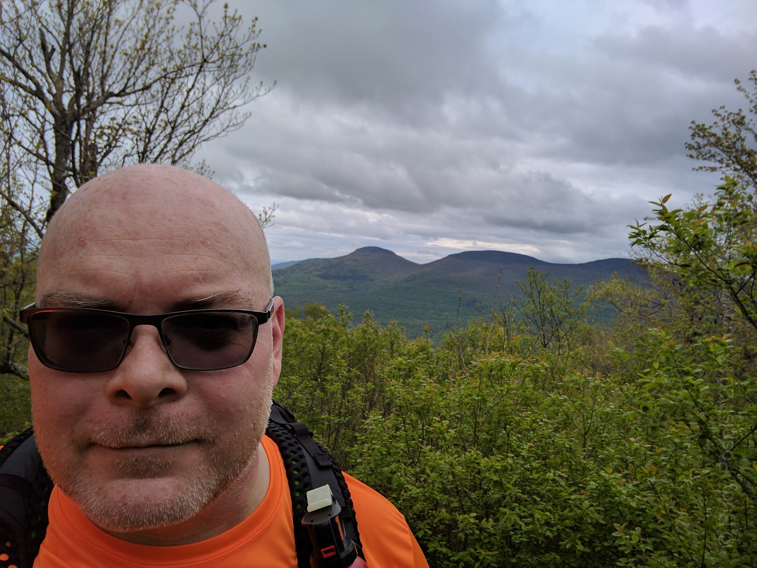 Your's truly, near the summit of Windham High Peak in the Catskill Mountains. That's Blackhead Range in the background.